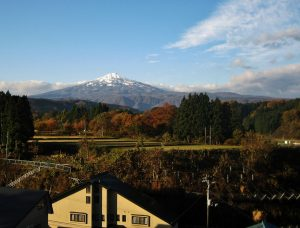 Japan Real Estate